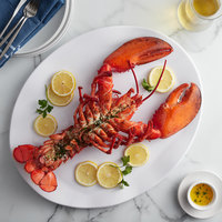 Boston Lobster Company 25 lb. Case of 3-4 lb. Live Hard Shell Lobsters