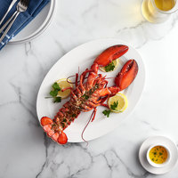 Boston Lobster Company 25 lb. Case of 1.5 lb. Live Hard Shell Lobsters