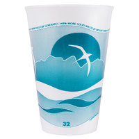 Dart 32LX32H 32 oz. Horizon Foam Cup - 500/Case
