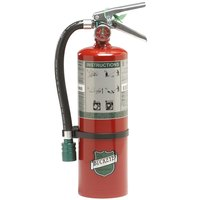Buckeye 5 lb. Halotron Fire Extinguisher 75550 - UL Rated 5B:C - Rechargeable Untagged