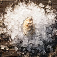 Rappahannock Oyster Co. 300 Count Live Rappahannock River Oysters