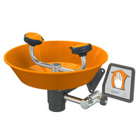 Guardian Equipment G1750P Wall Mounted Eye and Face Wash Station with ABS Plastic Bowl
