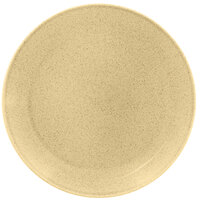 RAK Porcelain GNNNPR31CB Genesis Glossy 12 3/16 inch Creme Brule Flat Porcelain Coupe Plate - 6/Case