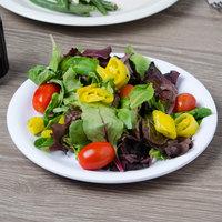 Carlisle 3300602 Sierrus 7 1/4 inch White Narrow Rim Melamine Salad Plate - 48/Case