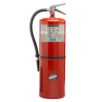 Buckeye 20 lb. Purple K Dry Chemical BC Fire Extinguisher - Rechargeable Untagged - UL Rating 120-B:C