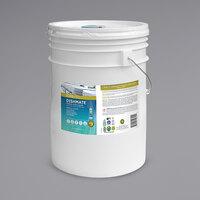 ECOS PL9721/05 Pro Dishmate 5 Gallon Free and Clear Manual Dishwashing Liquid
