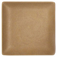 Elite Global Solutions ECO66SQ Greenovations 6 inch Paper Bag-Colored Square Plate
