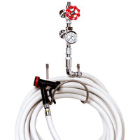 T&S MV-1907-11CW-ER Chrome Plated Washdown Station with Single Service Valve, Thermometer, 10' Hose, Stainless Steel Water Gun, and Hose Rack