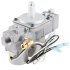 All Points 54-1065 Dual Solenoid Gas Valve - 25V