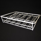Turbo Air 30278F0400 Gravity Feed Coated Wire Shelf - 20 1/4 inch x 16 inch - 5 Lanes