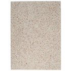 Rubbermaid FG400300CORL Coral Aggregate Panel for FG397000, FG397001, FG397088, FG397100, and FG397200 Landmark Series Classic Containers