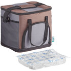 Choice Brown Small Insulated Nylon Cooler Bag with Brick Cold Pack (Holds 24 Cans)