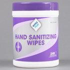 WipesPlus Hand Sanitizing Wipes - 240/Canister