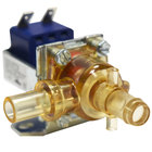 Curtis WC-817 Right Side Dump Valve - 120V, 12W