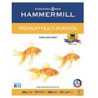 "Hammermill 106310 8 1/2"" x 11"" White Case of 20# Premium Multipurpose Paper - 5000/Sheets"