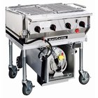 MagiKitch'n LPAGA-30 Stainless Steel MagiCater 30 inch Portable Outdoor Grill