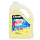 SC Johnson Windex® 682265 1 Gallon Multi-Surface Disinfectant / Sanitizer - 4/Case