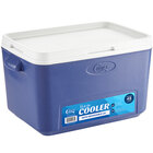 Choice Blue 33 Qt. Cooler with Side Handles