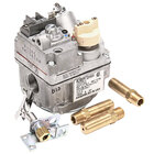 APW Wyott 300271 Conversion Kit - Liquid Propane to Natural Gas