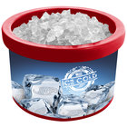 Red Ice Cube 900 4 Qt. Countertop Merchandiser