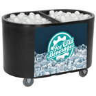 Ice Bin Merchandisers and Coolers