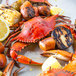 "Linton's Seafood 6 1/2"" Non-Seasoned Steamed Jumbo Maryland Blue Crabs - 60/Case Main Thumbnail 4"