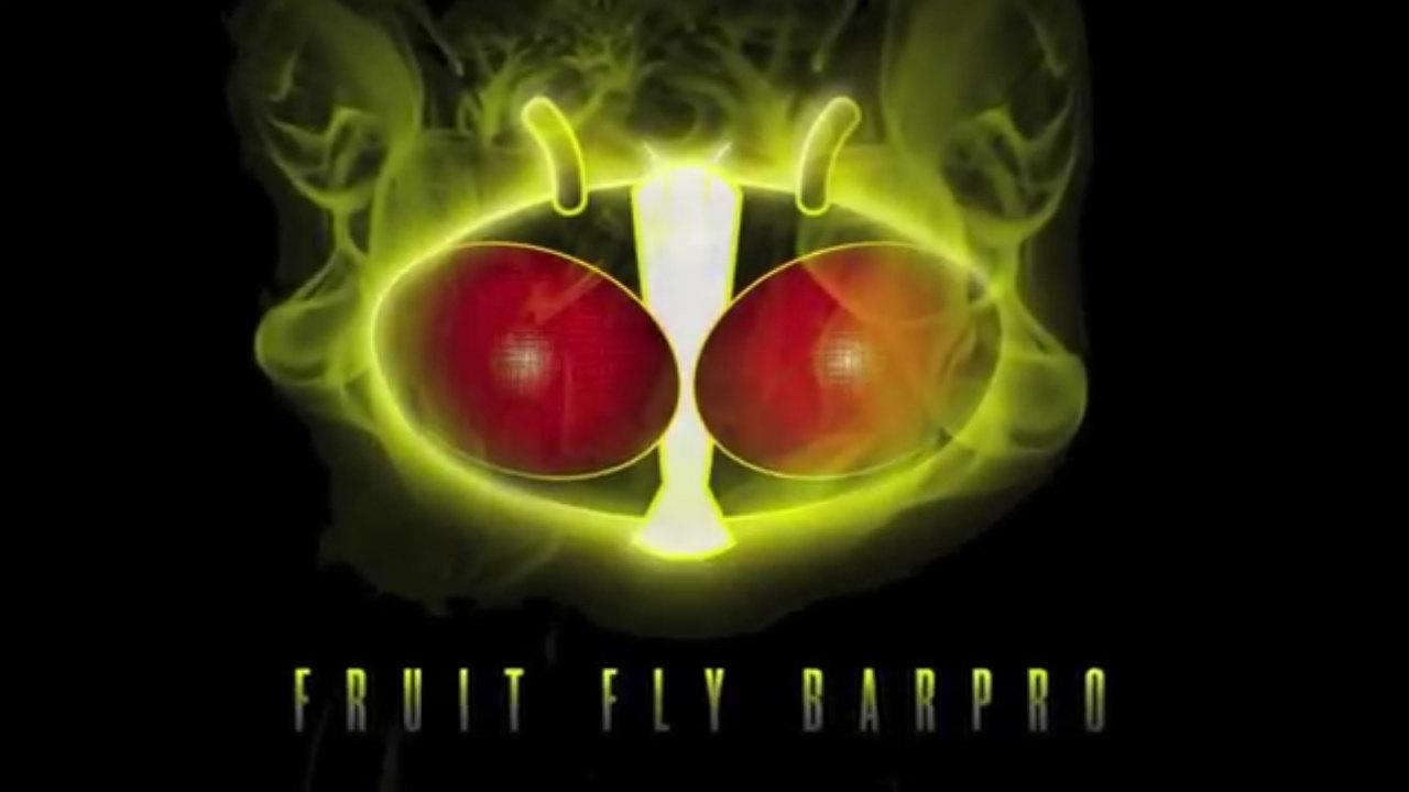Fruit Fly Barpro Insecticide Vapor Strip Video Webstaurantstore