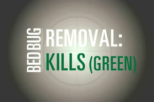 JT Eaton Kills Bed Bugs Green