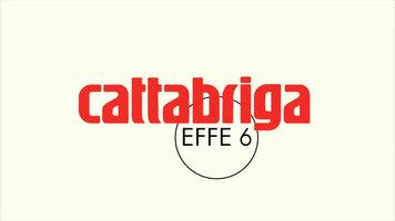 Cattabriga Effe 6 Vertical Batch Freezer