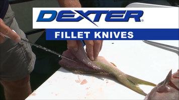 Dexter-Russell Fillet Knives