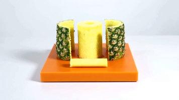Tellier Pineapple Peeler
