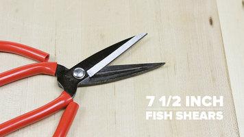 7 1/2 Inch Fish Shears