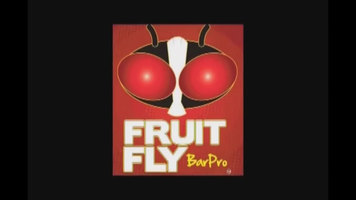 Fruit Fly BarPro Insecticide Vapor Strip