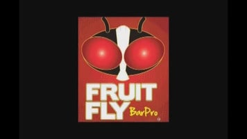 Fruit Fly BarPro Insecticide Vapor Strip
