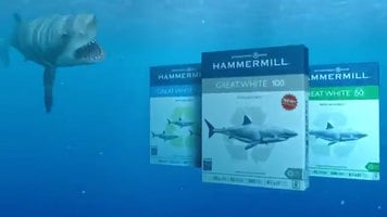 Hammermill Great White Paper