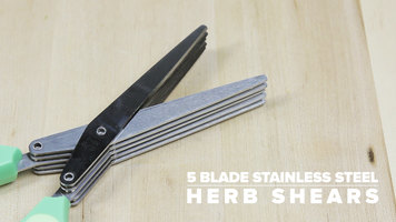 5 Blade Stainless Steel Herb Shears