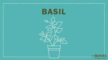 Mrs. Meyer's Garden-Inspired Scents: Basil