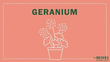 Mrs. Meyer's Garden-Inspired Scents: Geranium