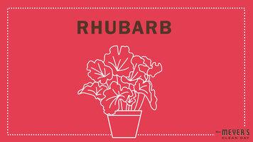 Mrs. Meyer's Garden-Inspired Scents: Rhubarb