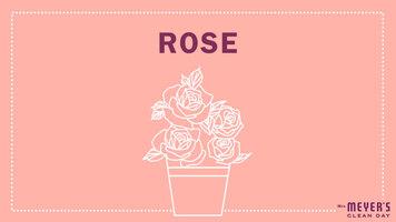 Mrs. Meyer's Garden-Inspired Scents: Rose