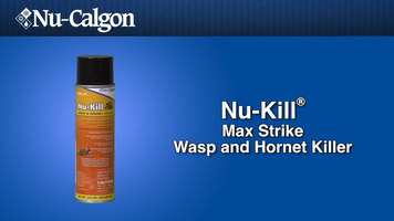 Nu-Calgon Nu-Kill Wasp and Hornet Killer