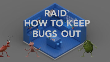 Raid: How to Keep Bugs Out