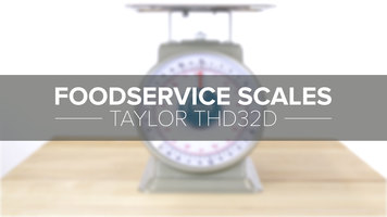 Taylor THD32D Mechanical Portion Scale with Dashpot