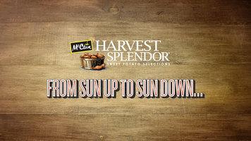 Harvest Splendor: All Day Favorites