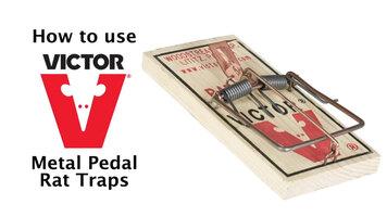 Victor Metal Pedal Rat Trap Instructional Video