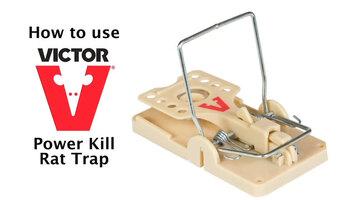 Victor Power Kill Rat Trap Instructional Video