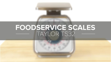 Taylor TS32 Mechanical Portion Scale