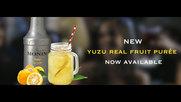 Monin Yuzu Fruit Puree