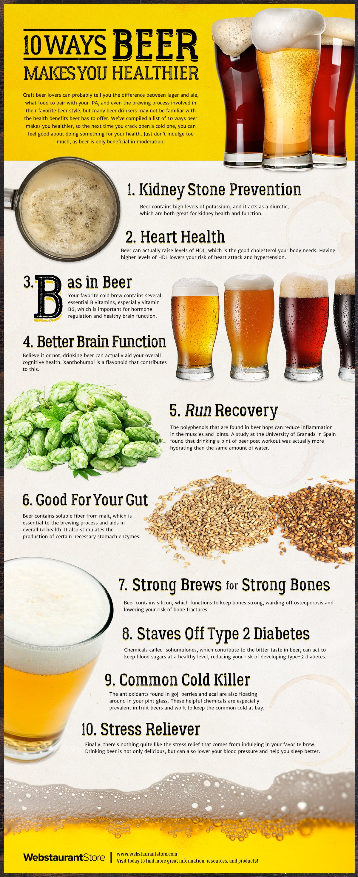 Types of Beer & Styles: A Comprehensive Guide | WebstaurantStore