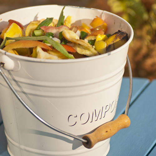 compost bin full of food scraps